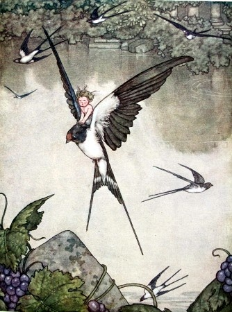 Hans Andersen's Fairy Tales illustrated by Heath Robinson