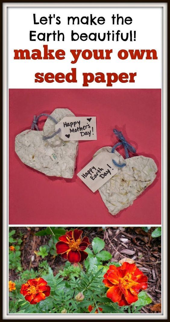 Seed paper to make with your students or children. A great Earth Day project! Also makes a lovely Mother's Day gift.