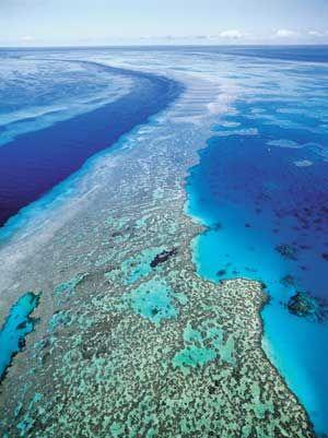 The Great Barrier Reef in Queensland, Australia.