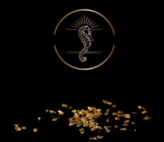 логотип Дома на чёрном фоне и золотые хлопья