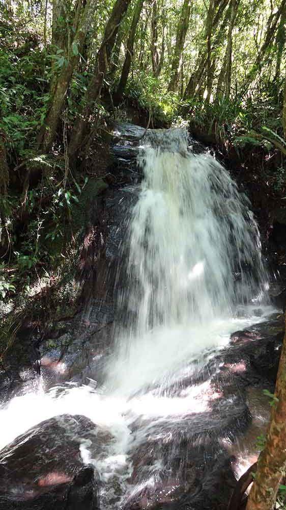 Cachoeira da Trilha das Bromélias - Gonçalves - Cidades de Minas Gerais. Repleta de cachoeiras, esta pequena cidade mineira encanta com sua paisagem.