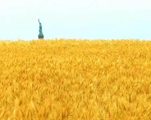 """Agnes Denes, Wheatfield - A Confrontation, 1982. Denes planted a two-acre wheat field in Manhattan. 4 months later the crop was harvested, yielding more than 1,000 pounds of wheat. The harvested grain then traveled to 28 cities across the globe in an exhibition called """"The International Art Show for the End of World Hunger."""" Planting wheat across from the Statue of Liberty on urban land worth 4.5 billion created a powerful paradox that Denes hoped would call attention to misplaced…"""