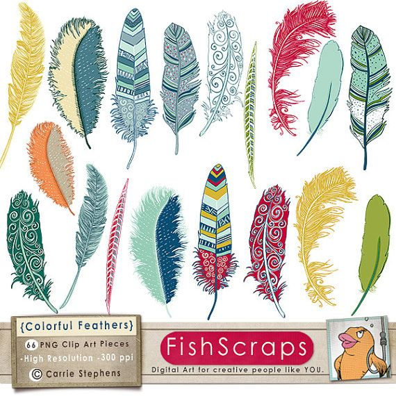 Colorful Feather ClipArt - Clip Art  Bird Feathers  for small business use.  Commercial Use, Digital Scrapbooking, Cards, Crafts and more.