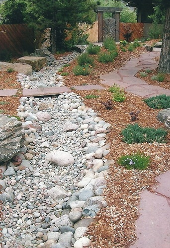 dry river bed in yard
