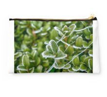 Green but Frozen Studio Pouch