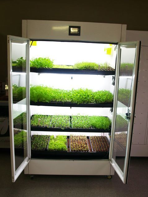 The Commercial Cultivator ™ Hydroponic Kitchen Garden 400 x 300