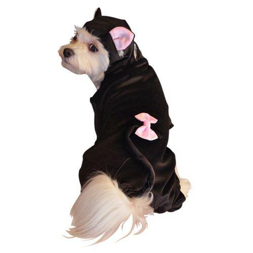 Dog Costume - Black Cat - Extra Small