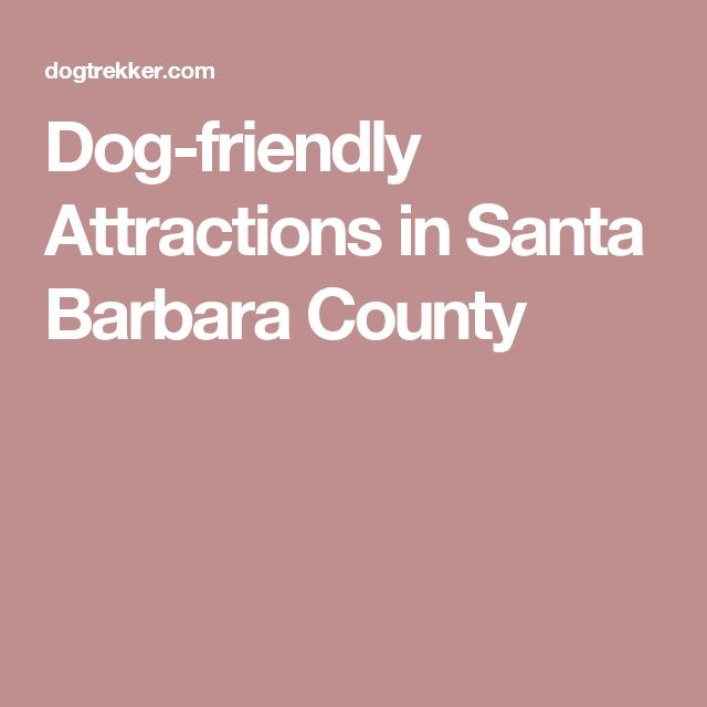 Dog-friendly Attractions in Santa Barbara County