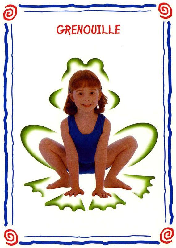 grenouille modèle