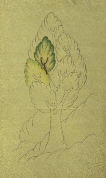 Cahide Keskiner - Minyatür Sanatında Doğa Çizim ve Boyama Teknikleri Siyer-i Nebi'den Aşamalı olarak bir ağacın boyanması: