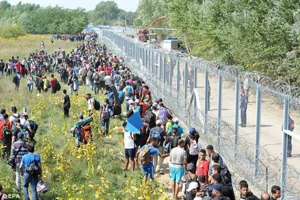 Potrivit oficialilor europeni în valul de refugiați care a dat peste cap Europa, sirienii nu ajung la 20%,