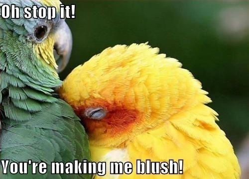 you make me blush meme - photo #10