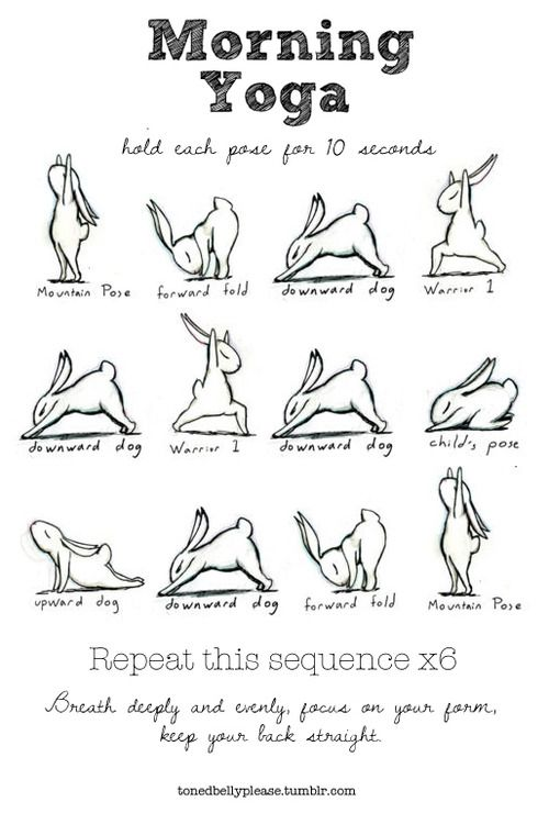 Morning yoga. It's a bunny doing those poses...not a person. GAH I LOVE THIS!!!
