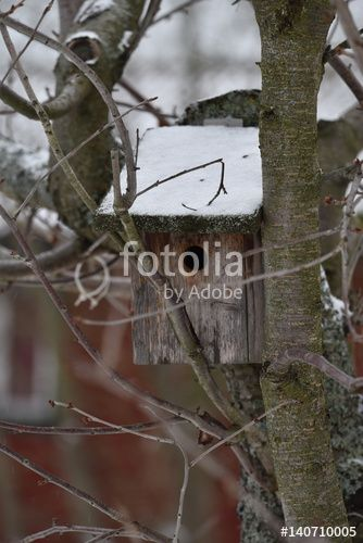 "Download the royalty-free photo ""Wooden bird house on a tree during the winter season"" created by Ciaobucarest at the lowest price on Fotolia.com. Browse our cheap image bank online to find the perfect stock photo for your marketing projects!"