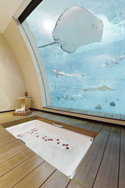 A bathroom with ocean view