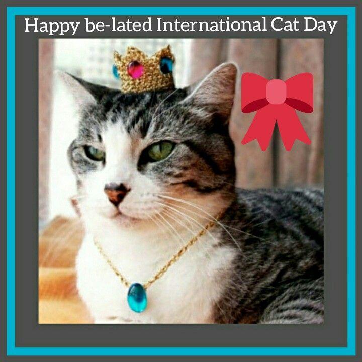 International Cat Day Kitten Accessories International Cat Day World Cat Day