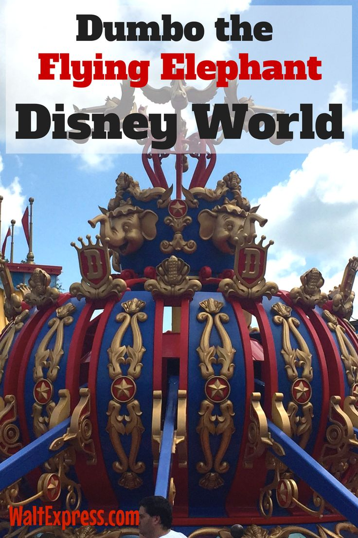 Video: Dumbo the Flying Elephant at Magic Kingdom a Disney World Review