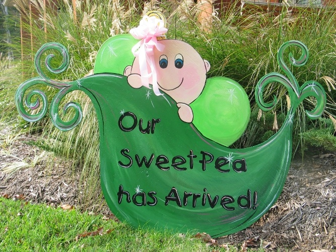 1000 images about Special Delivery – Baby Announcement Lawn Signs