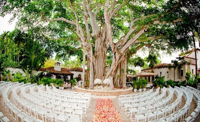 17 Best Images About Wedding Aisle Ideas On Pinterest