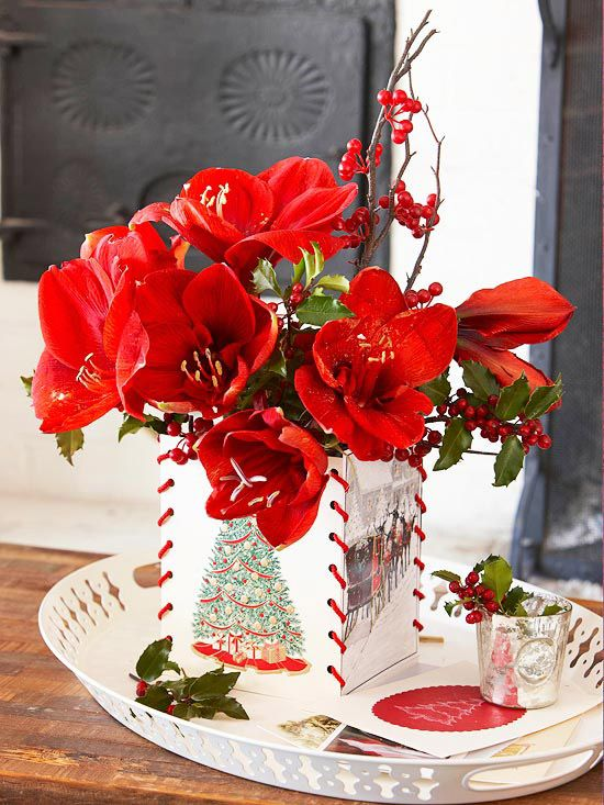114 best images about fall and winter gardening on for Amaryllis christmas decoration