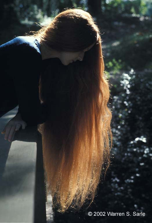 Alice(0).jpg: Images by Warren S. Sarle