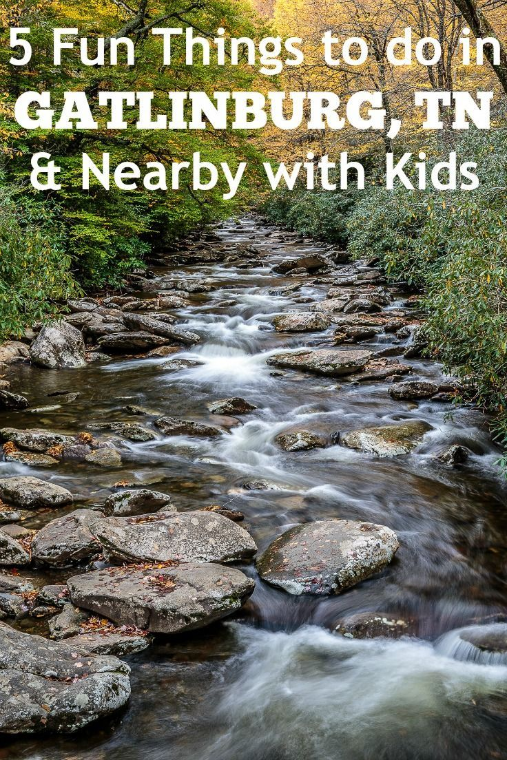 Fun things to do in Gatlinburg TN with kids | Gatlinburg TN Attractions
