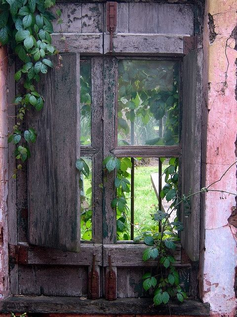 So charming, rustic and peeling❥