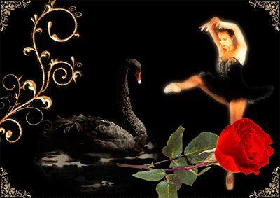 Анимация Девушка балерина и черный лебедь, плавающий в воде, гифка Девушка балерина и черный лебедь, плавающий в воде