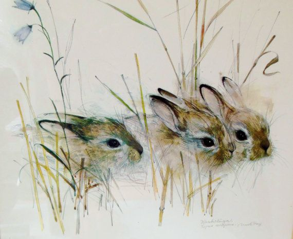 Rabbit Watercolor Harekelinger Danish Artist by FreewheelFinds, $55.00