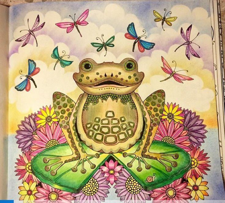 Frog Enchanted Forest Sapo Floresta Encantada Johanna Basford Adult ColoringColoring BooksColouringSecret