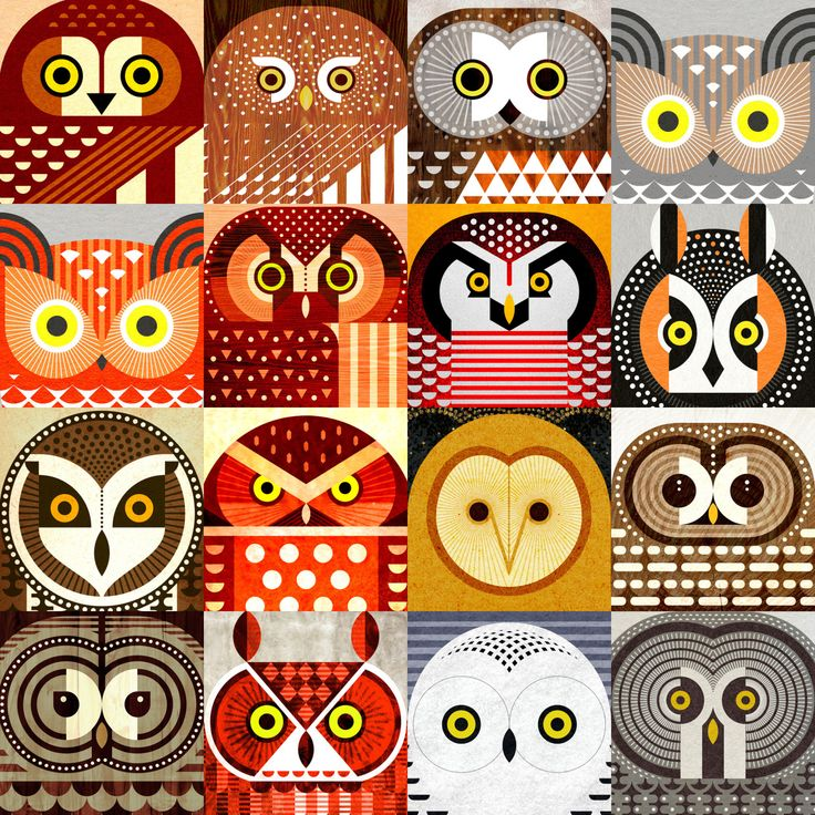"""jevajeva: """"  Sixteen species of North American owls, including Snowy, Pygmy, Hawk, Great Horned, Saw Whet, Elf, Boreal, Short Eared, Long Eared, Great Great, Spotted, Screech, Barred, Burrowing, and Barn Owls. Available at Redbubble and Society6 . """""""