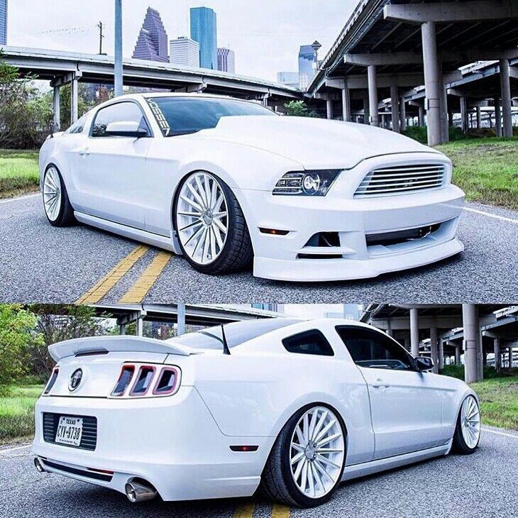 351 Best Images About Badass Mustangs On Pinterest Roush