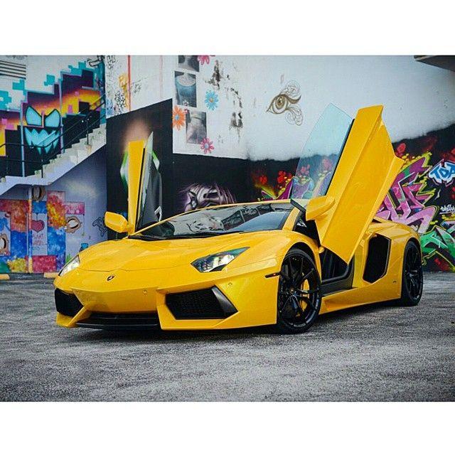 96 Best Lamborghini Rental Miami Images On Pinterest