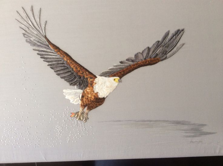 African Fish Eagle completed