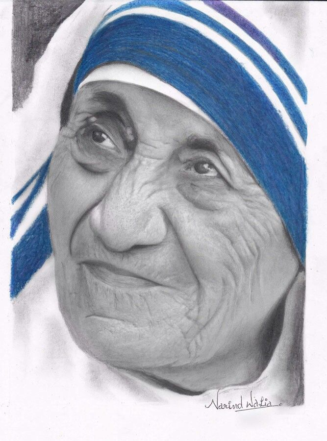 Mother teresa graphite and colour pencil on paper by narind walia