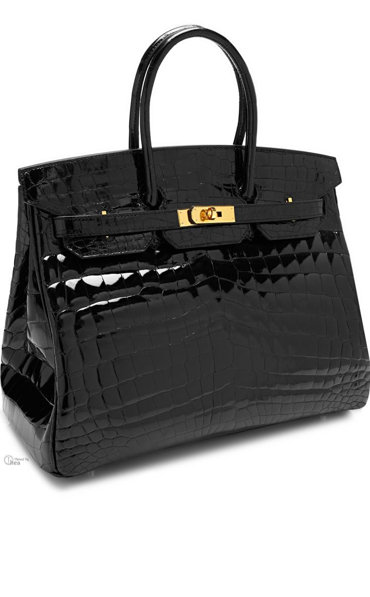 Hermes Birkin  ● Shiny Black Nilo Crocodile