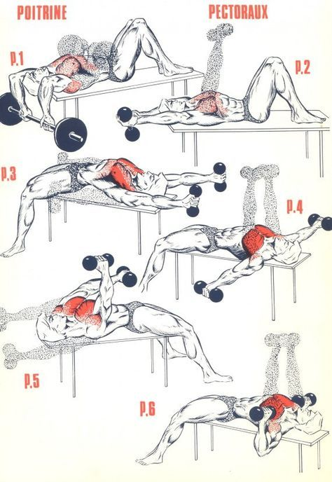 25+ best ideas about Chest workout for mass on Pinterest | Bicep ...
