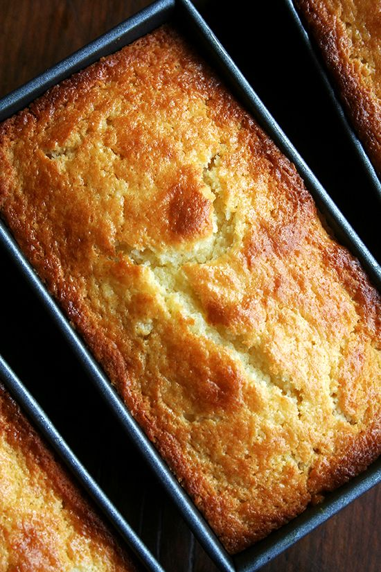 orange-ricotta loaves....mmmm. Imagine this toasted w a little ricotta on top!