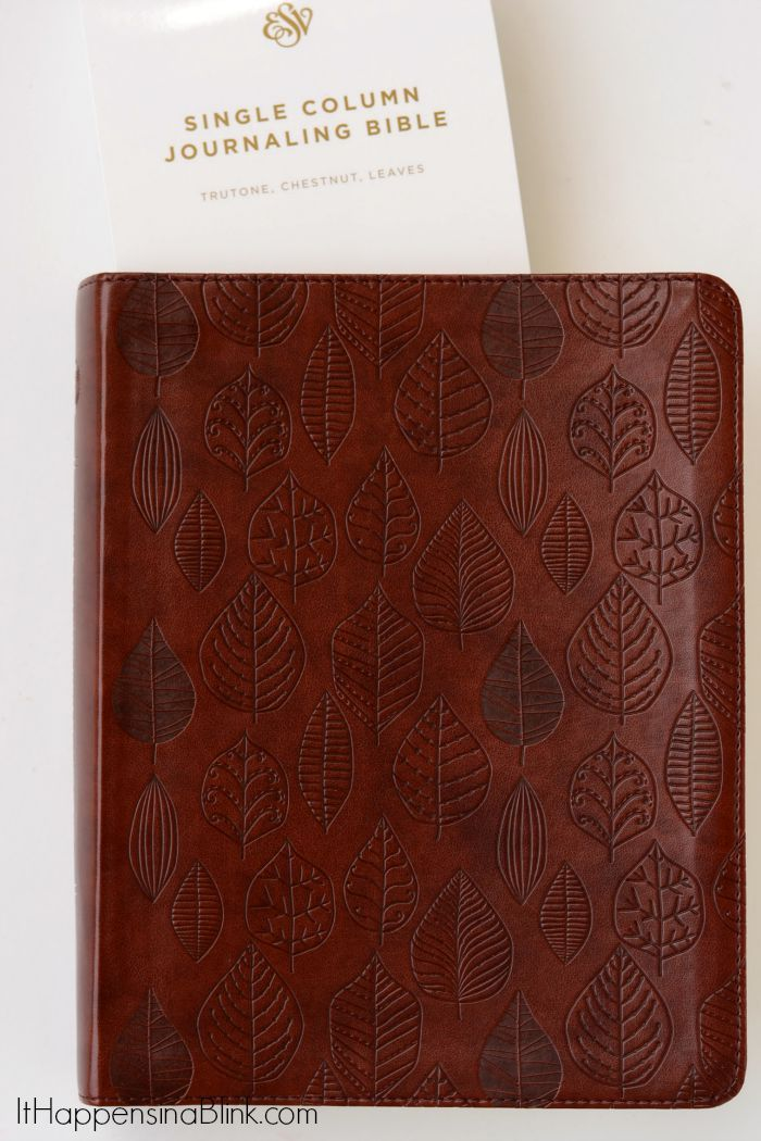 ESV Single Column Journaling Bible | AD | 2 inch columns that are great for notetaking or Bible journaling