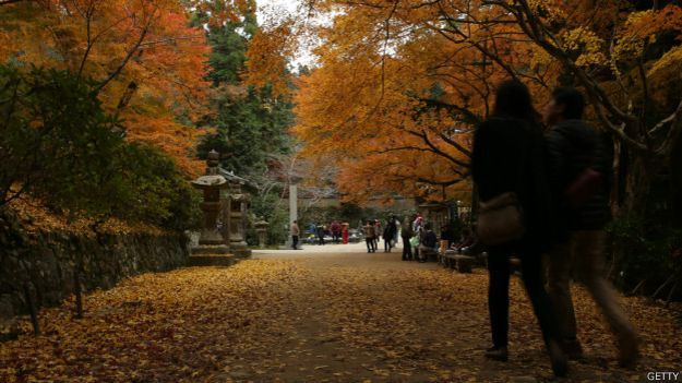 Los parques urbanos más bellos del mundo Parque Yoyogi, en Tokio