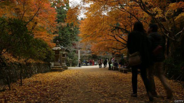 Los parques urbanos más bellos del mundo [Parque Yoyogi, en Tokio]