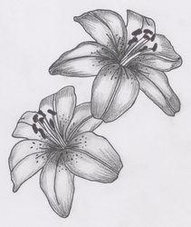 http://www.tattoo-holland.nl/tattoo---bloemen.html