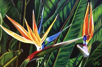 Birds of Paradise - Acrylic on Canvas