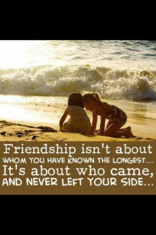 : True Friendship, Best Friends, Sotrue, Bestfriends, Truths, So True, Real Friends, Friendship Quotes, Truefriendship