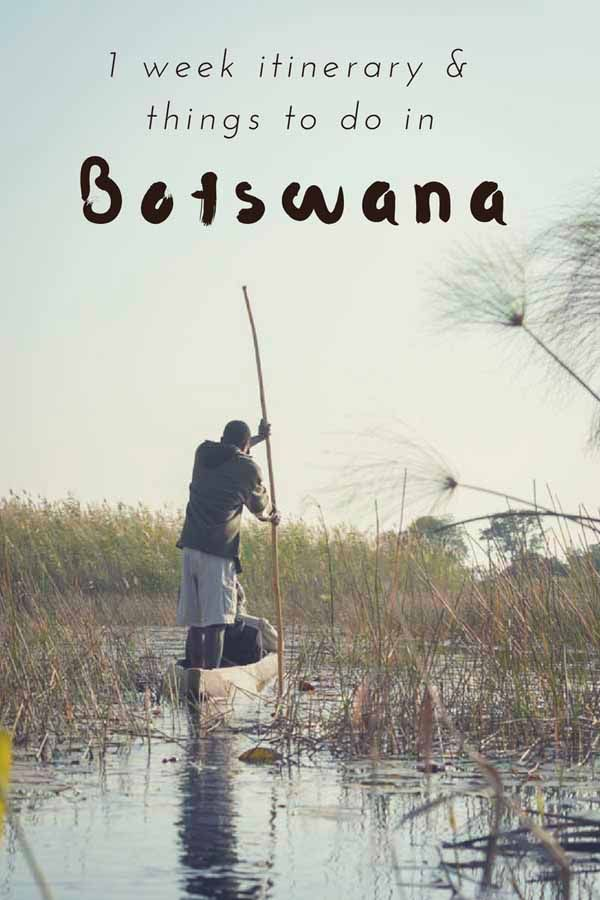 1 week itinerary and the best Botswana tourist attractions, reflections on ecotourism in Botswana and tips to enjoy Botswana on a budget! #VisitBotswana #BotswanaSafari