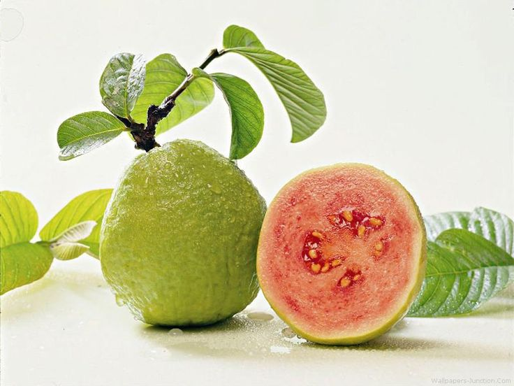 Guavas are plants in the Myrtle family genus Psidium which contains ...