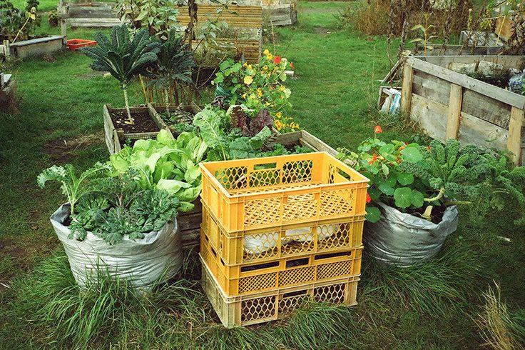 Allmende Kontor   The Garden Edit