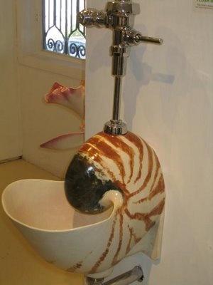 ! A Nautilus Urinal!