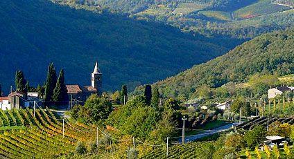 Colli Euganei - Faedo (Padua - Italy)