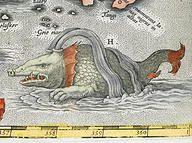 A Sea Monster, Antwerp 1531